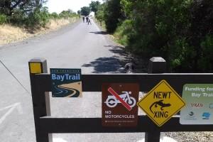 Miller Bay Trail