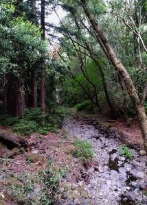 Creek l