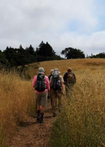 hiking trail m