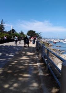 Monterey trail