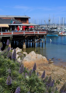 Monterey wharf m 2052