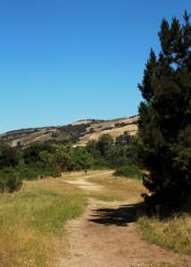 more trail m 2107