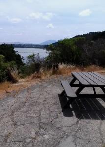 picnic l