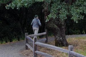 rounding first oak