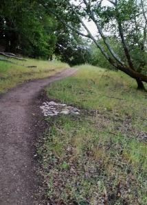 trail l