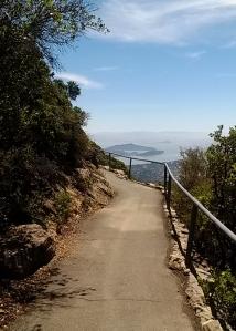 View NE of Mt Tam