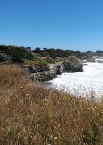 6-14 Gualala view to Sea Ranch l