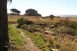 PB open trail