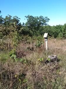 Leopold bird box