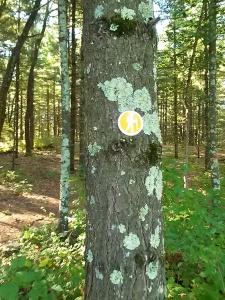 Leopold trail marker