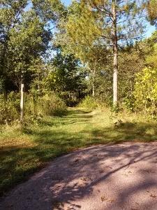 Leopold trails
