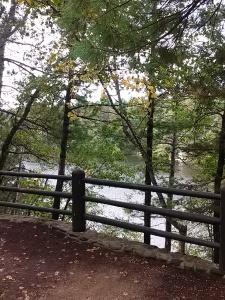 M Lake through trees