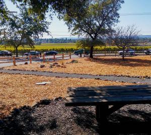 Shiloh picnic view