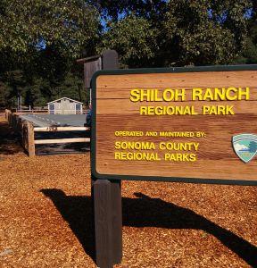 Shiloh sign
