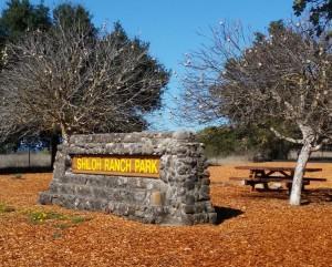 Stone Shiloh sign
