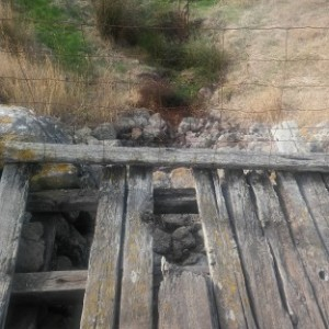 14 old cross creek