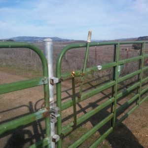 2 gate