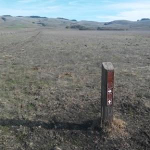 5 trail post