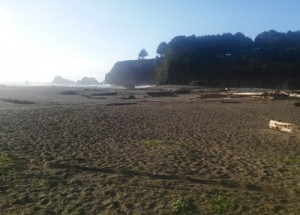 More Navarro River Beach