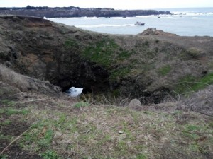 Sink Hole at Noyo Headlands
