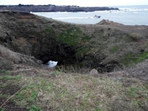 Sink Hole at Noyo Headlands