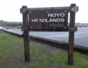 Nono Headlands l