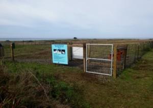 Noyo Headland dog park