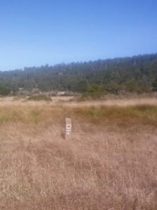 Black Point Trail