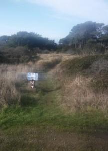 Cross Sea Ranch road