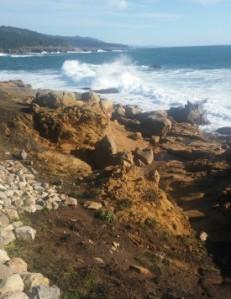 Salt Point waves h