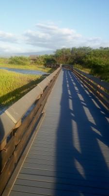 Kealia boardwalk