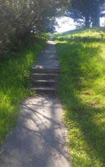 Tens Hollow trail l