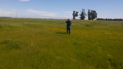 Jepson Prairie with Mike