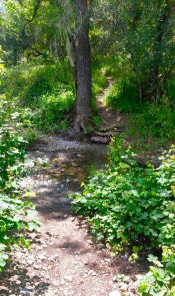 l creek