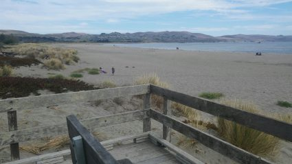 Doran Beach to Golf Course