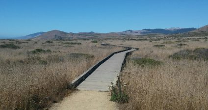 Kortum Trail boardwalk